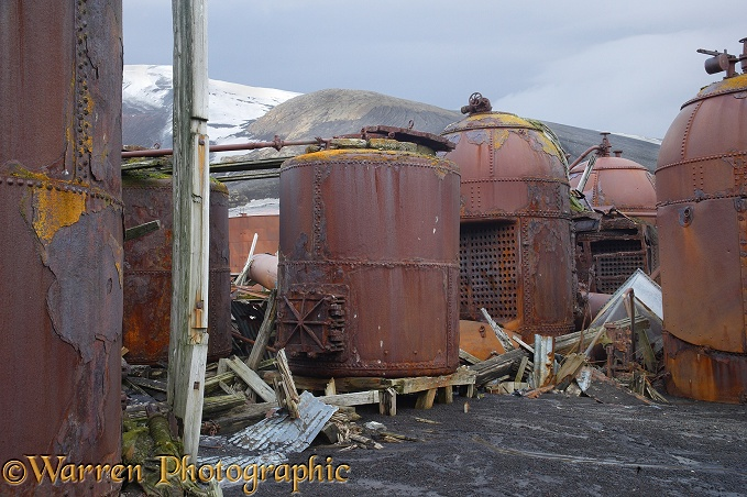 Rusting remains of an old whaling station.  Deception Island, Antarctica