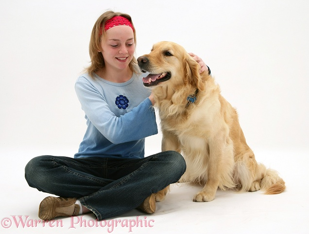 Golden Retriever, Barney, cuddled by Lille, white background