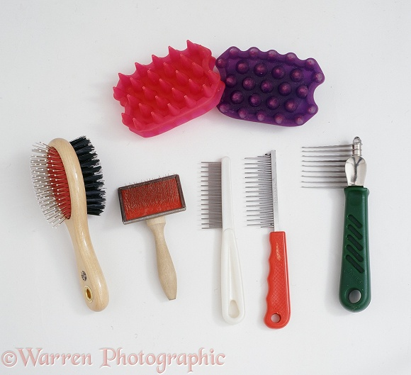 Cat grooming tools, white background