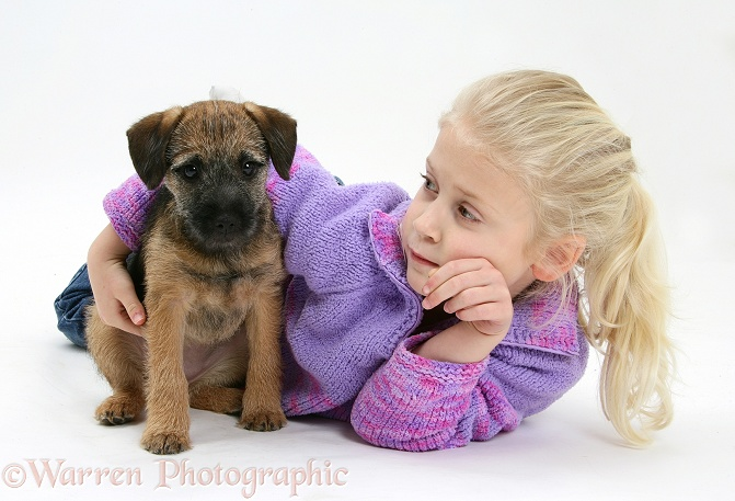 Siena (6) with Border Terrier bitch pup, Kes, white background