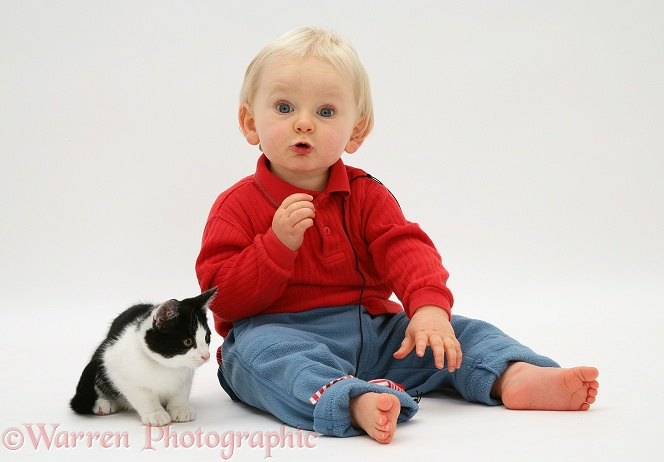 Toddler with black-and-white kitten and catnip mouse, white background