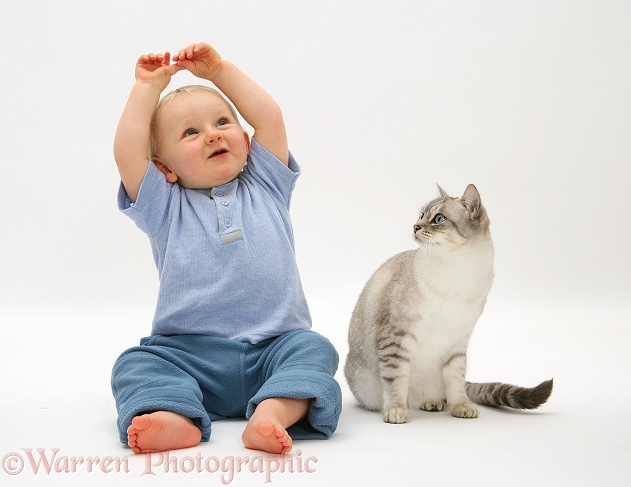 Toddler with Bengal cat