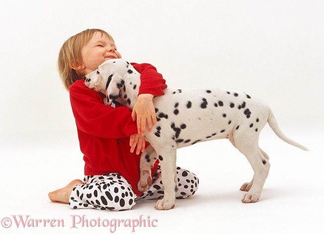 Giselle, 2 years old, hugging Dalmatian puppy, 8 weeks old, white background