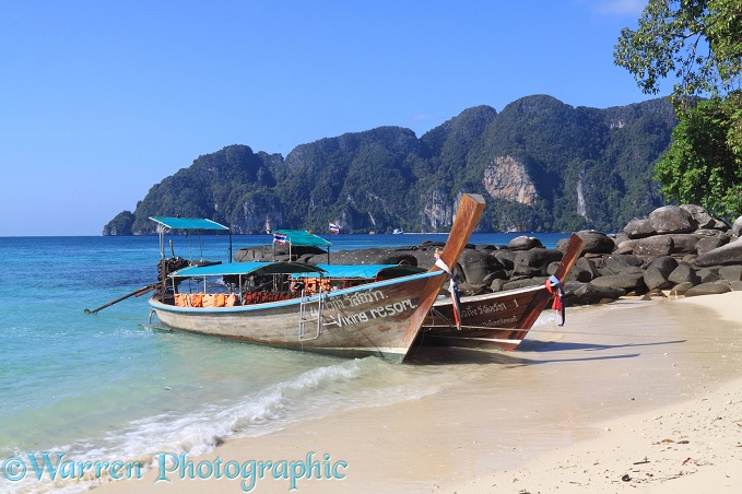 Long-tail boats on a tropical beach.  Koh Phi Phi, Thailand