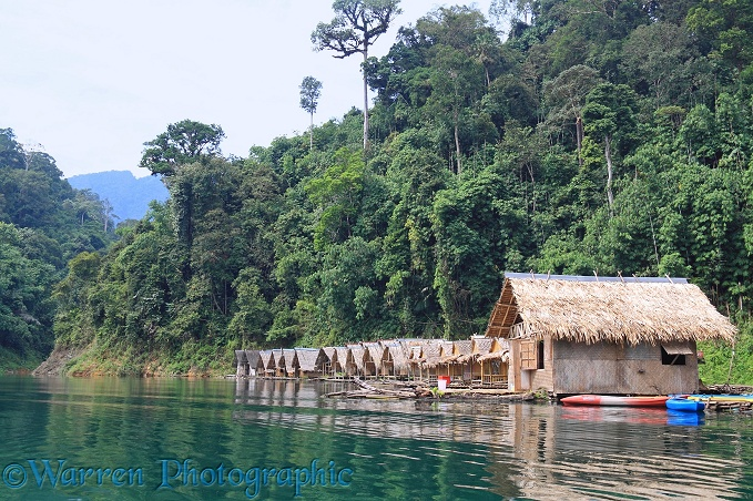 Floating raft houses.  Khao Sok, Thailand