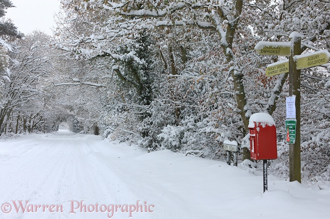 Early Snow on rural road.  Surrey, England