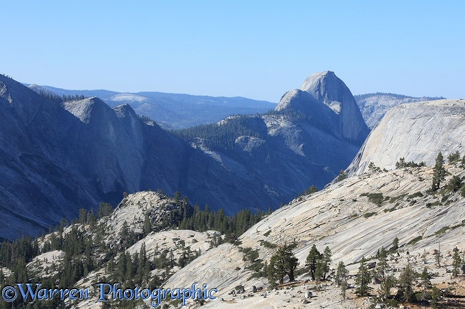 View of Half Dome granite monolith.  Yosemite, California, USA
