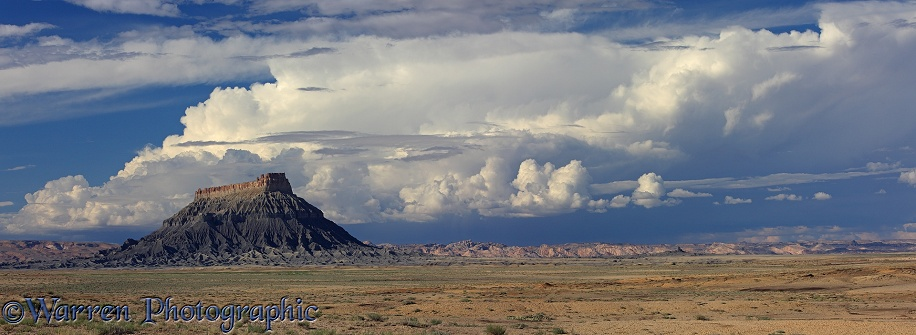 Rocky outcrop and cumulonimbus clouds.  Utah, USA