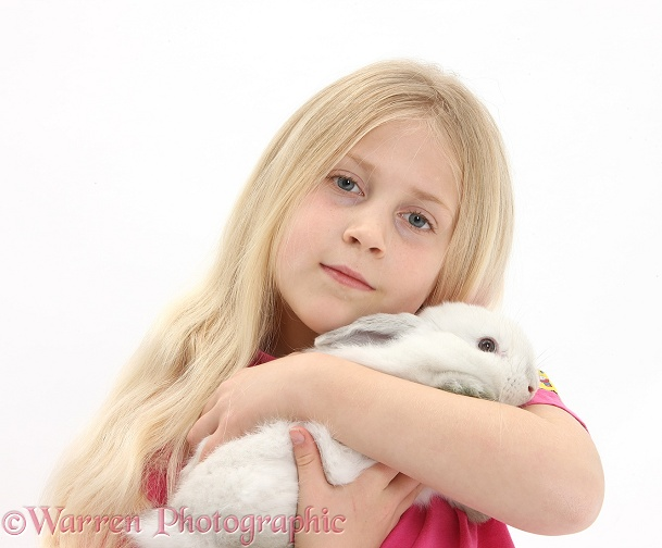 Siena with young white rabbit, white background
