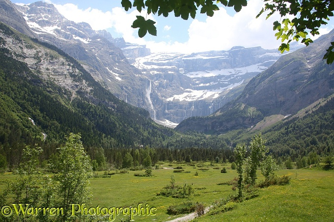 Alpine meadow overlooked by Le Cirque de Gavarnie, French Pyrenees