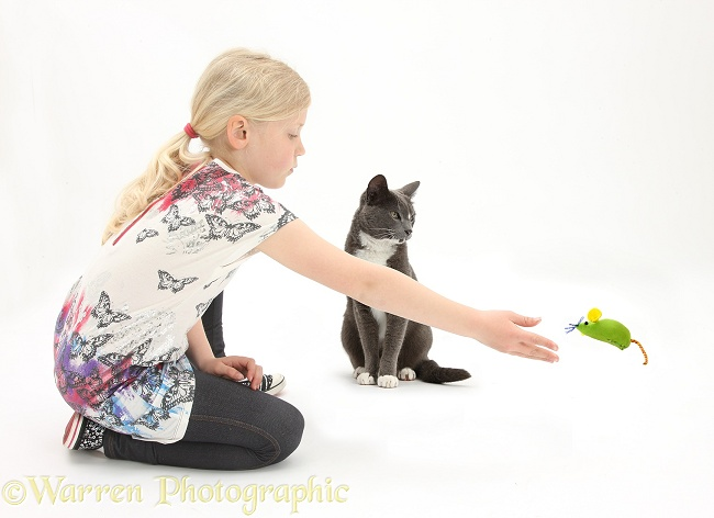 Siena throwing a catnip toy mouse for Burmese-cross cat, Levi, white background