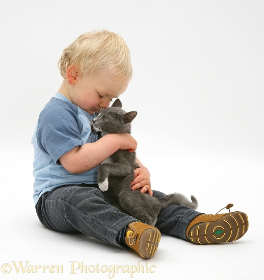 Toddler boy, Leon, playing with blue-and-white Burmese-cross kitten, Levi, white background