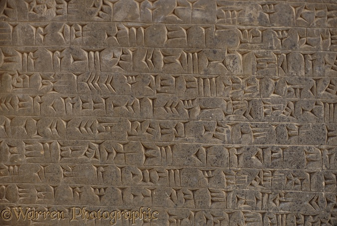 Ancient Assyria: cuneiform script in the library of the king's place at Nimrud, northern Iraq