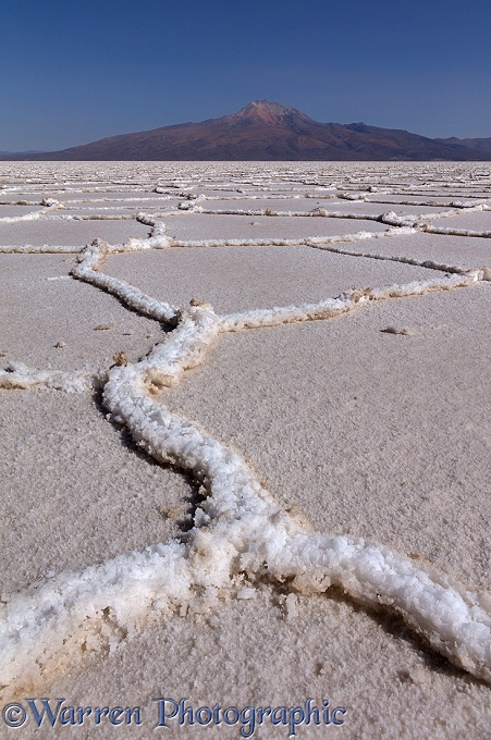 Polygon formations on surface of Salar de Uyuni Salt Pan.  Bolivia