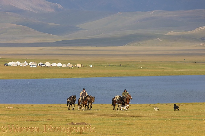 Yurts and horses by Song Kul Lake, Kyrgyzstan