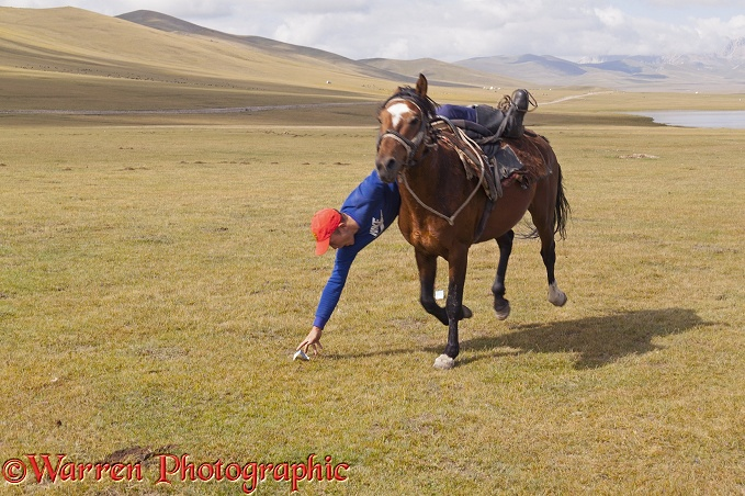 Horse rider trying to pick up money from the ground, as he canters past.  Song Kul Lake, Kyrgyzstan