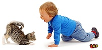 Toddler with kitten in play-bow