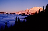 Alpen glow on Mt. Rainier