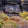 Layered rocks and autumnal plants