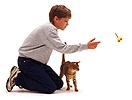 Boy teaching a cat to fetch