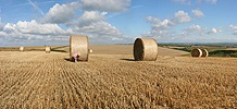 Girl with roly-poly bales