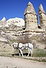 Horse and fairy chimneys