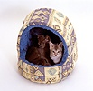 Two kittens in an igloo bed