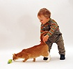 Toddler with ginger cat