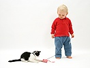 Toddler with black-and-white kitten and catnip mouse