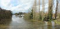 River Thames in flood 2014