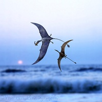 Pterosaurs at sunset