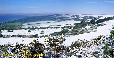 Spring snow in Dorset