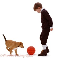 Boy playing football with a puppy