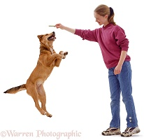 Girl with dog leaping for a chew