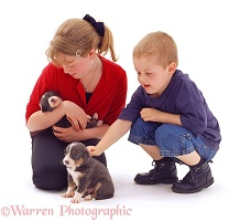 Children Choosing a puppy