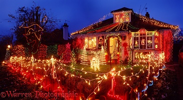 Christmas lights in Merrow