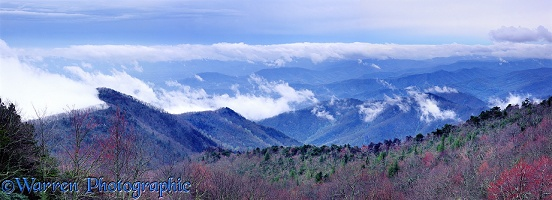 Blue Ridge Mountains panorama