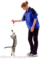 Girl with grasping silver tabby cat
