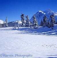 Highwood Lake and Mt. Shuksan - Winter