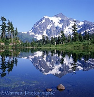 Picture Lake and Mt. Shuksan
