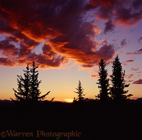 Manning Park sunset