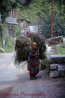 Indian woman with bundle of green plants