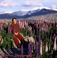 Jane & lupines in New Zealand