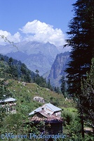 Tin shack in Manali