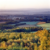 Leith Hill view