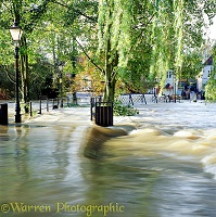 Flooding in Guildford