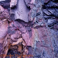 Colourful lava on Hawaii