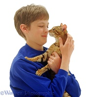 Boy and cat touching noses