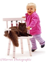 Little girl and chocolate cat on pink chair