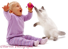 Little girl with mouse toy and kitten
